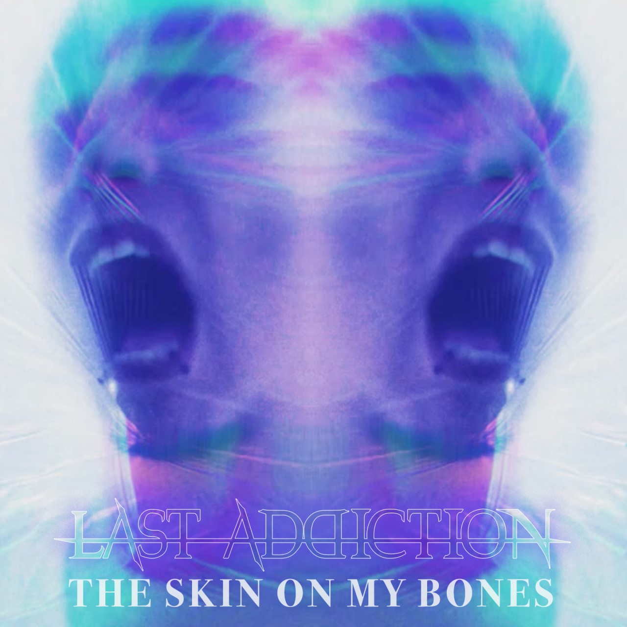 Last Addiction - The Skin On My Bones